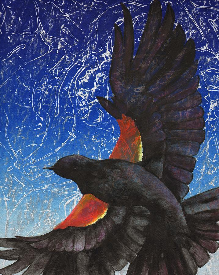Bird Drawing - Redwing by Sara Bell