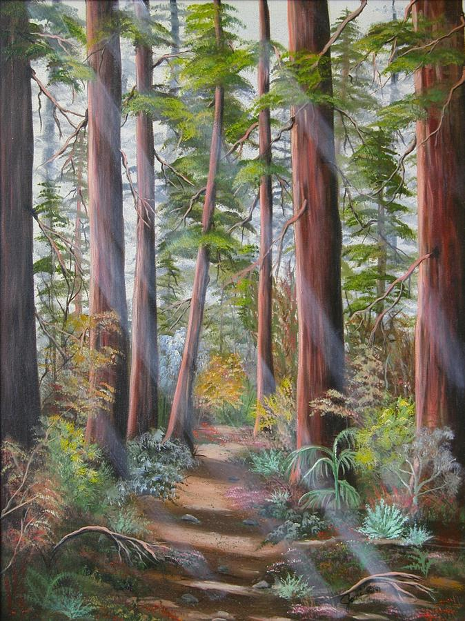 Redwood Path PaintingRedwood Tree Painting