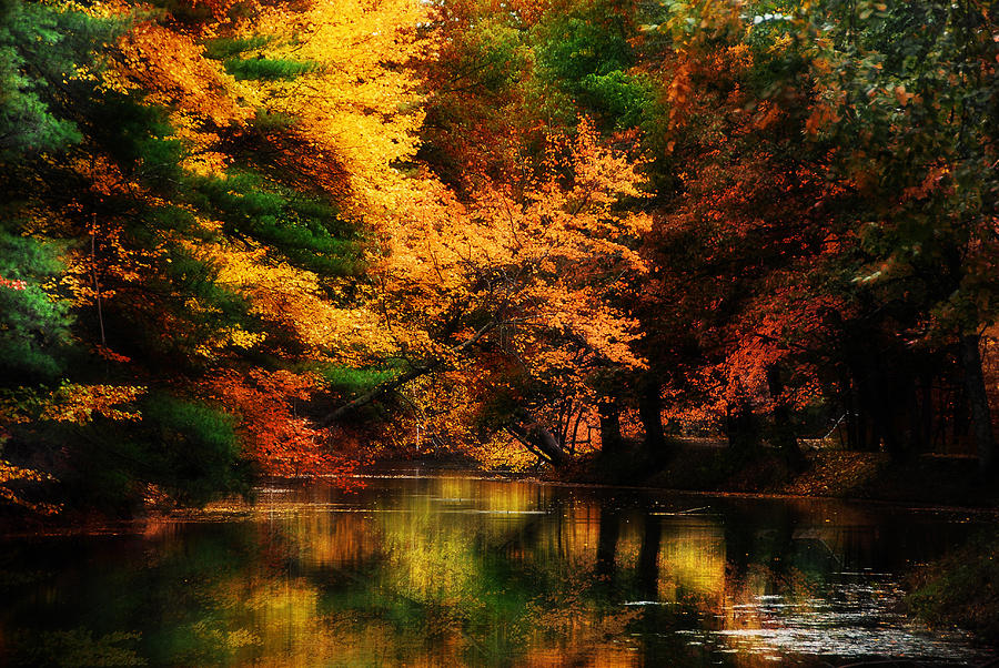 Reflection Of Autumn Photograph