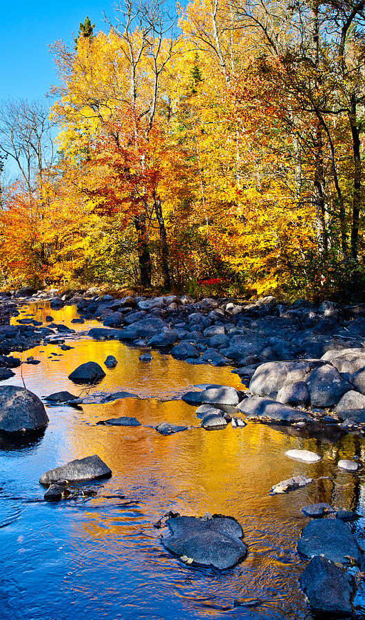 Fall Photograph - Reflections Down The Creek by Adam Pender