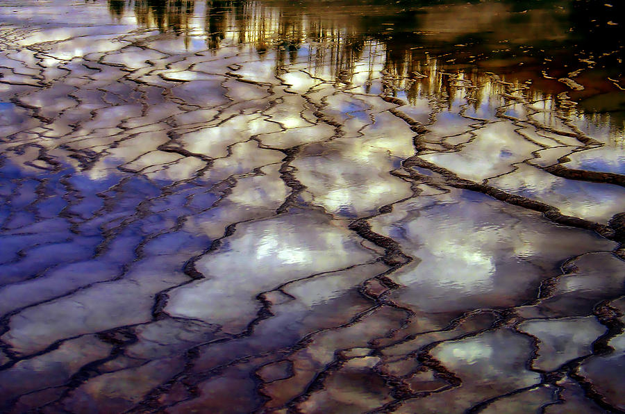 Yellowstone Photograph - Reflections by Ellen Heaverlo