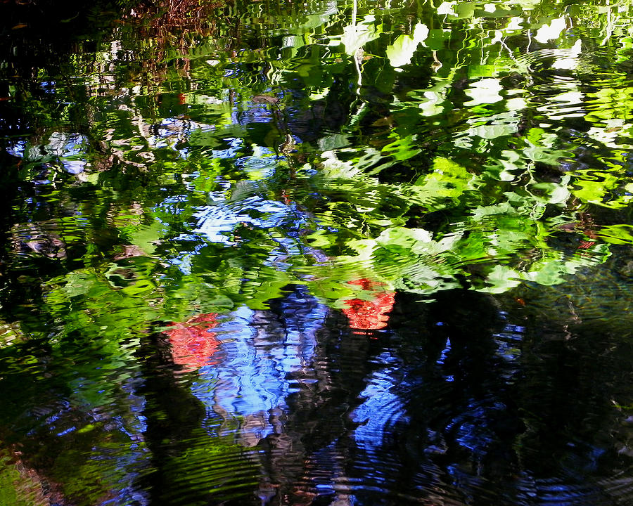 Reflections Of Fall In The Spring Photograph