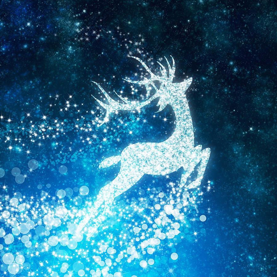 Reindeer Stars Photograph