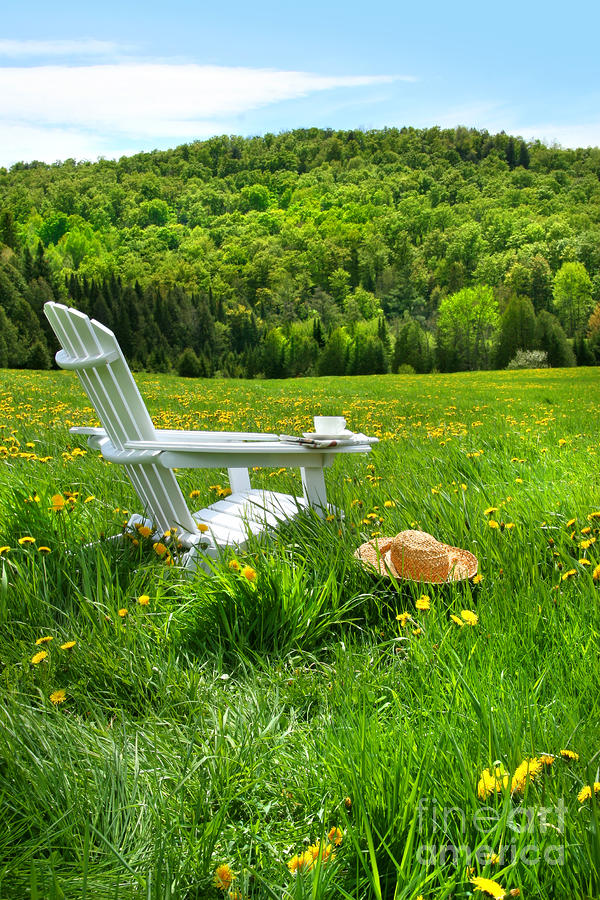 Relaxing On A Summer Chair In A Field Of Tall Grass  Digital Art