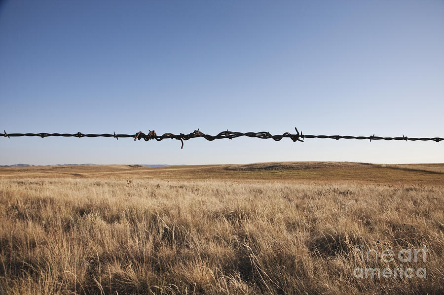 Autumn Photograph - Repaired Strand Of Barbed Wire by Jetta Productions, Inc