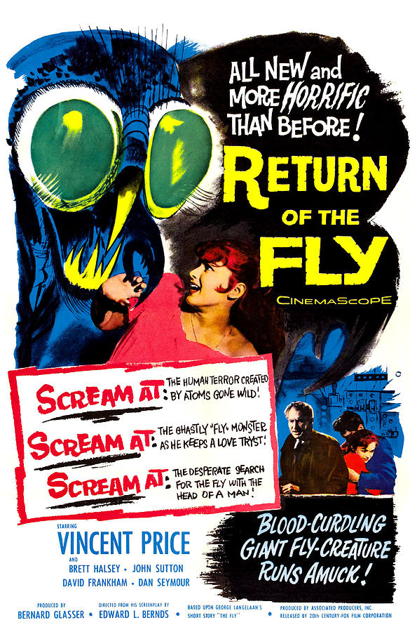 Return Of The Fly, Top Right Danielle Photograph