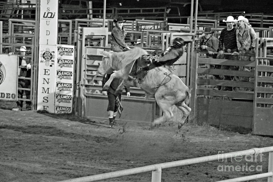 Ride em Cowboy Photograph