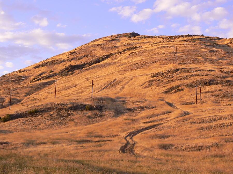 Riding The Range Photograph