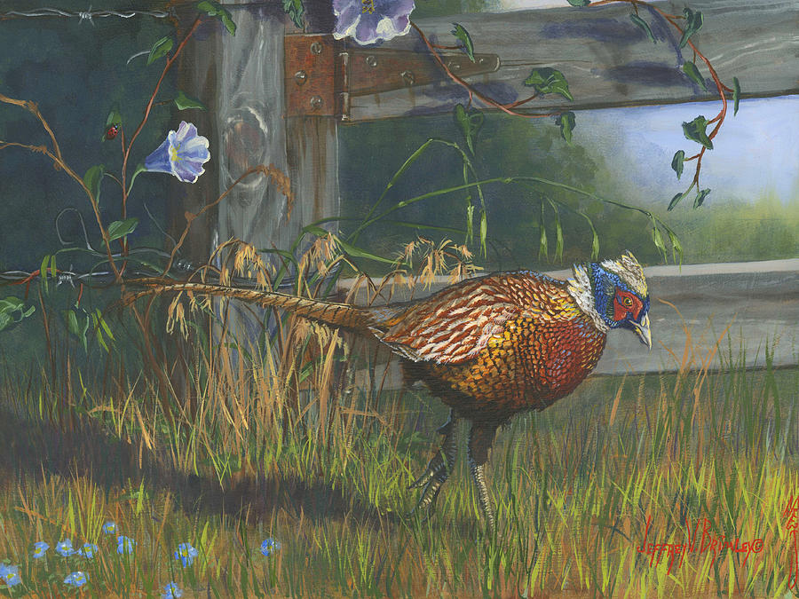 Pheasant Painting - Ringneck Pheasant by Jeff Brimley