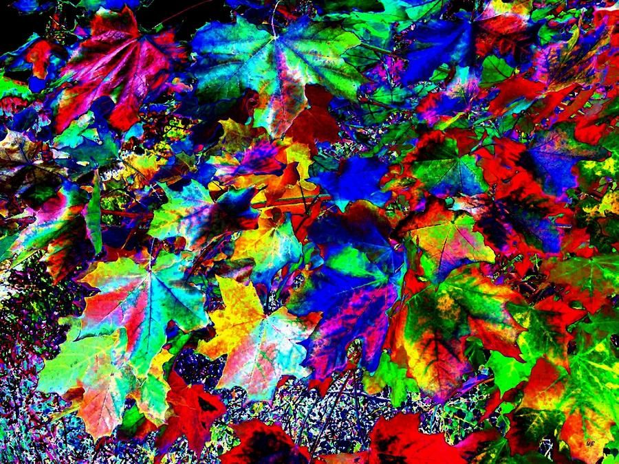 Riot Of Color Digital Art  - Riot Of Color Fine Art Print