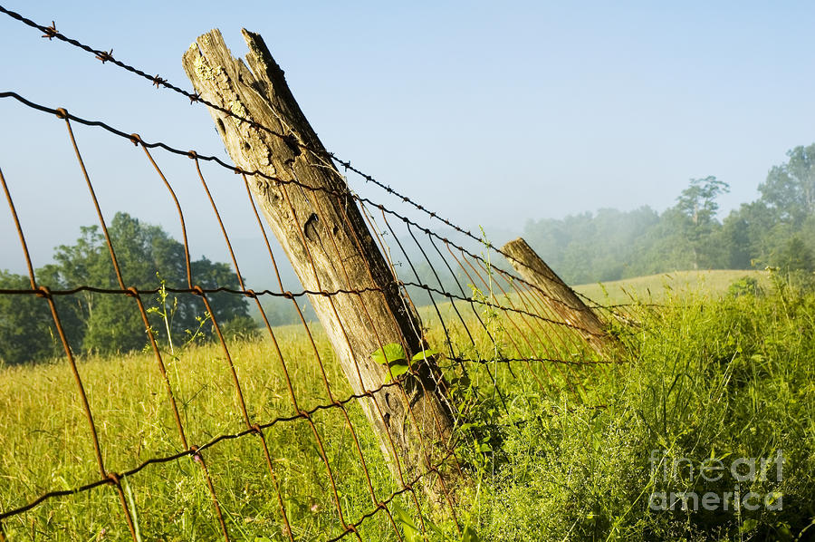 Rising Mist With Falling Fence Photograph