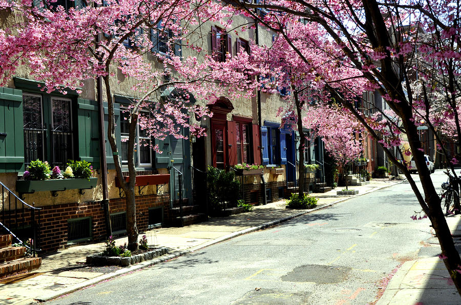 Rittenhouse Square Neighborhood Photograph