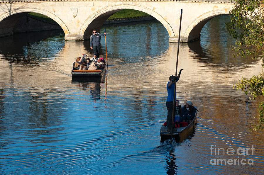 River Cam Traffic Photograph  - River Cam Traffic Fine Art Print
