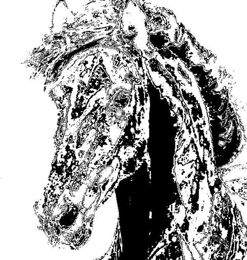 Rivers In A Horse Digital Art