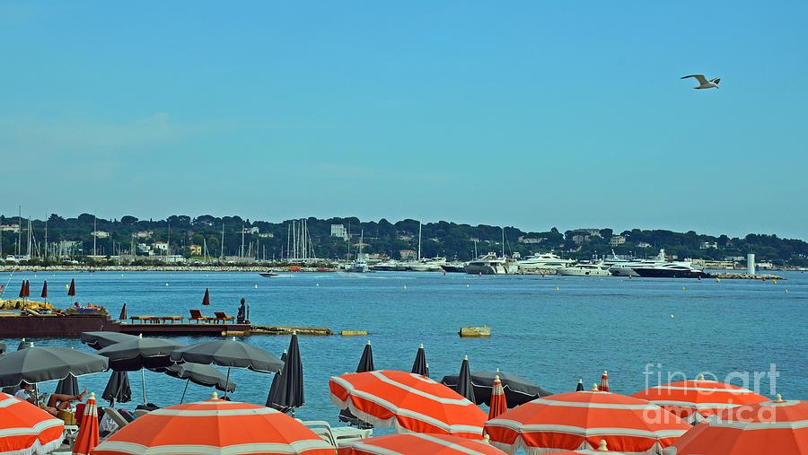 Riviera Style Photograph