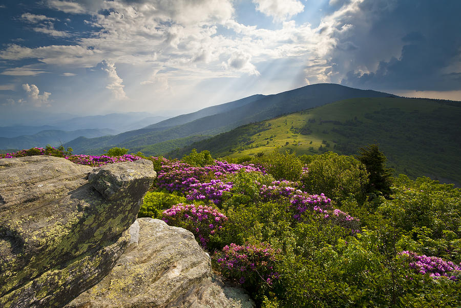 Roan Mountain From Appalachian Trail Near Janes Bald Photograph