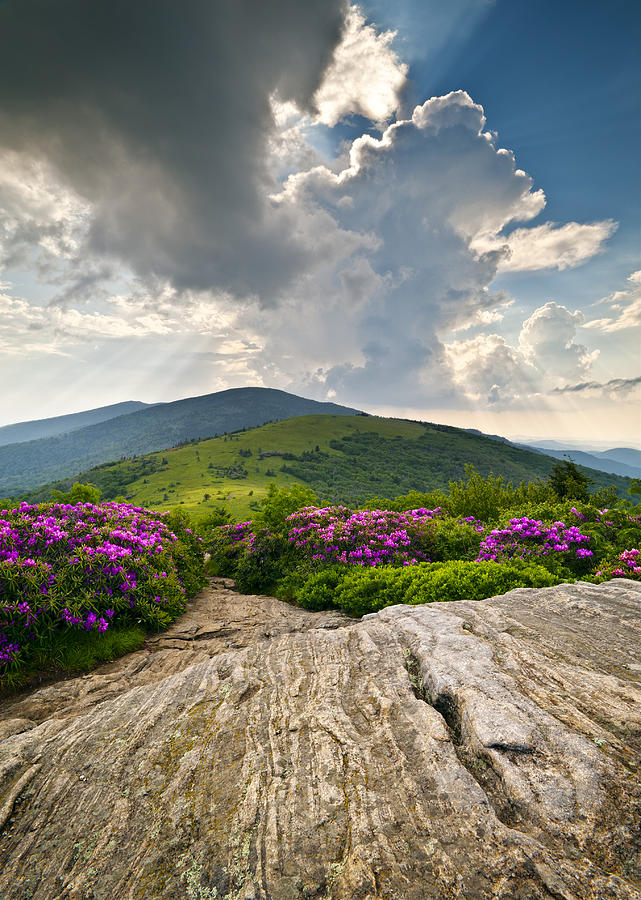 Roan Mountain Rays- Blue Ridge Mountains Landscape Wnc Photograph  - Roan Mountain Rays- Blue Ridge Mountains Landscape Wnc Fine Art Print