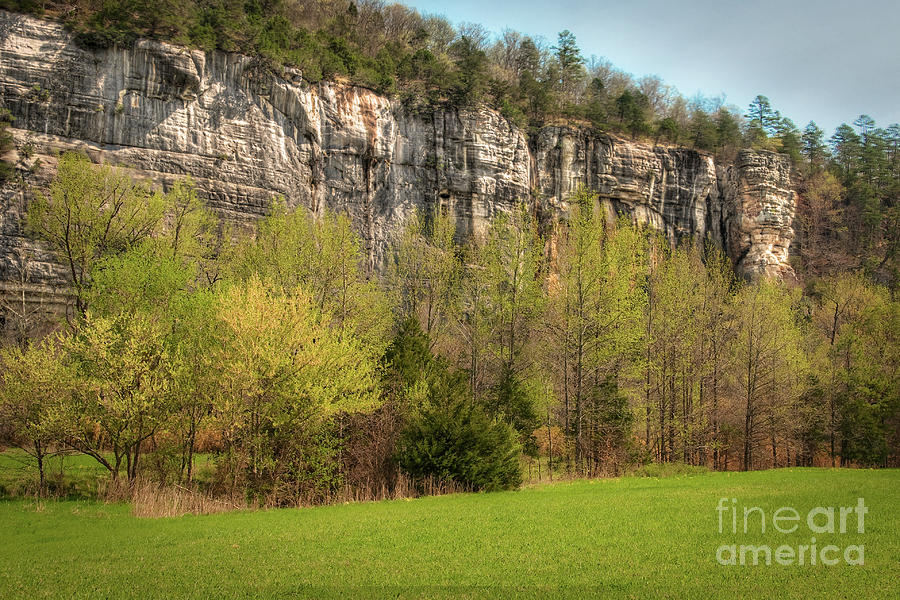 Roark Bluff Photograph