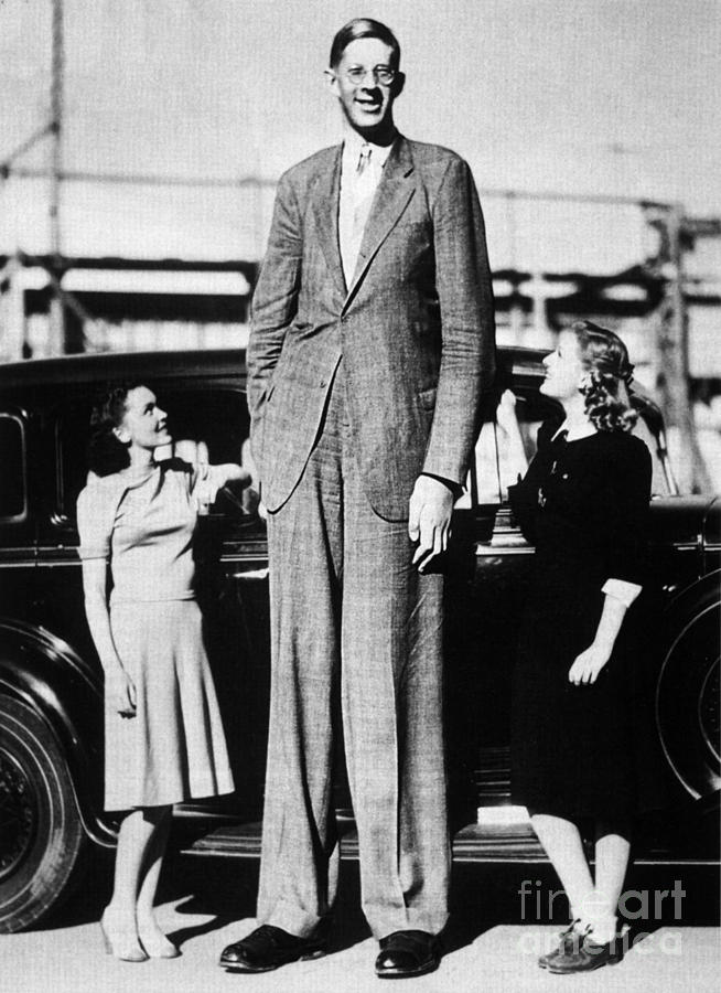 Robert Pershing Wadlow Tallest Man Photograph By Science