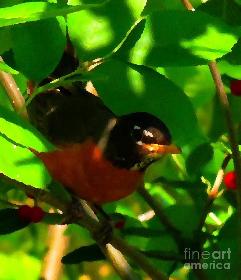 Robin Peeping Through Leaves Faux Oil Digital Art  - Robin Peeping Through Leaves Faux Oil Fine Art Print