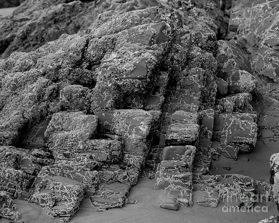 Rock Detail Oregon Coast Photograph  - Rock Detail Oregon Coast Fine Art Print