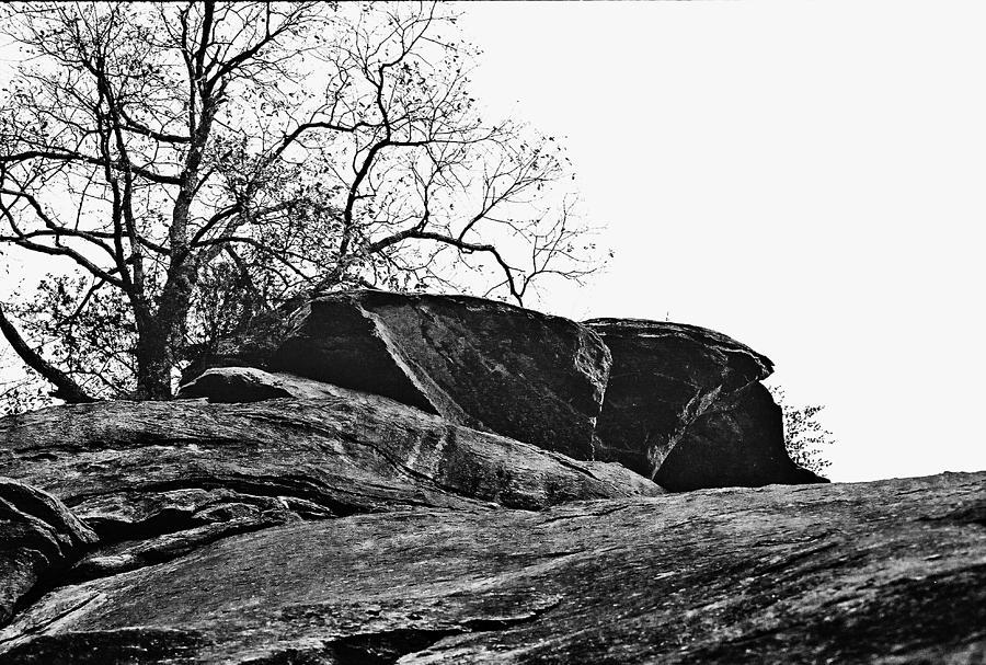 Rock Wave Photograph