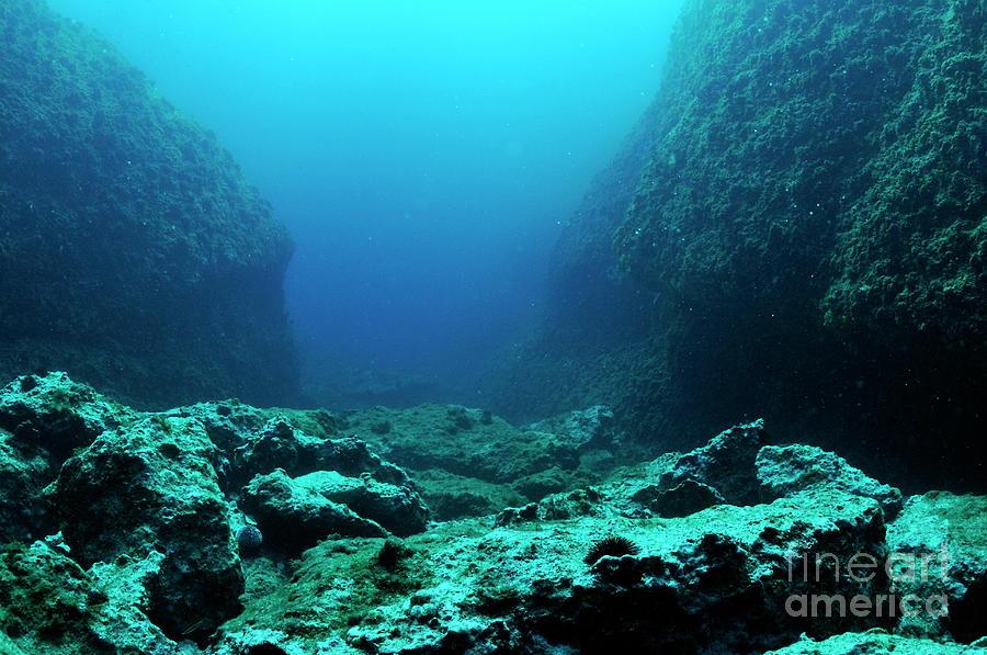 Rocks on ocean floor photograph by sami sarkis for Ocean s floor