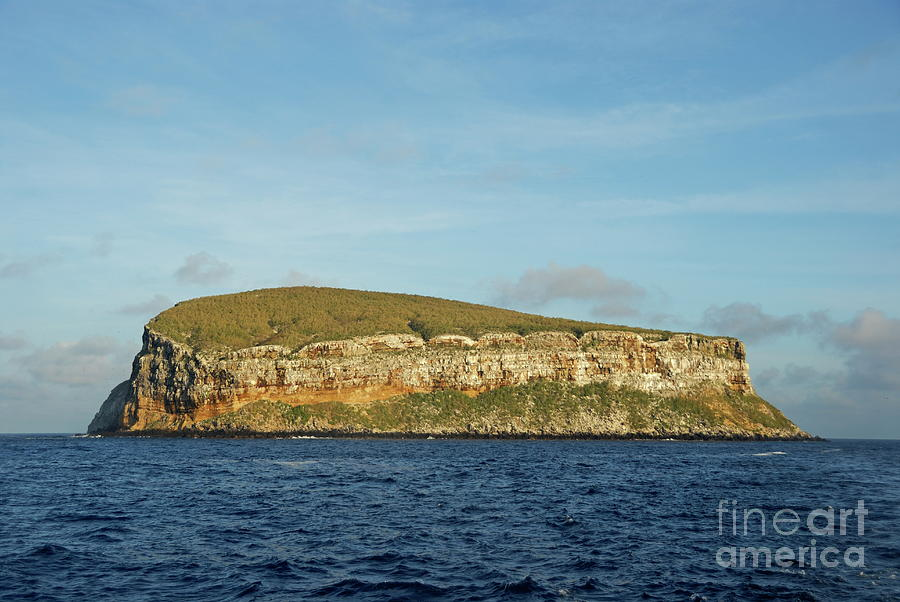 Rocky Cliffs Of Darwin Island Photograph