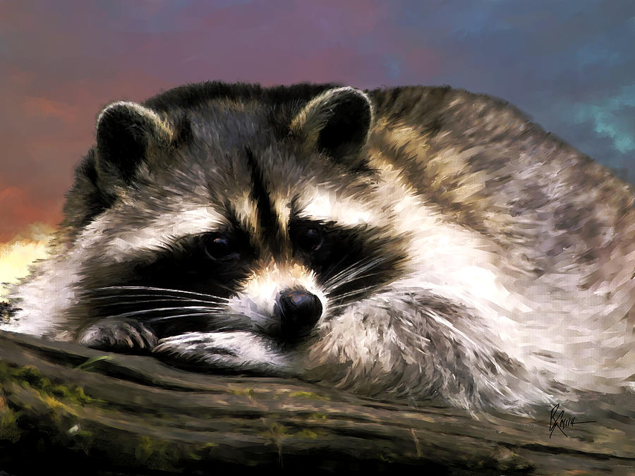 Rocky Raccoon Painting by Robert Smith Raccoon Painting