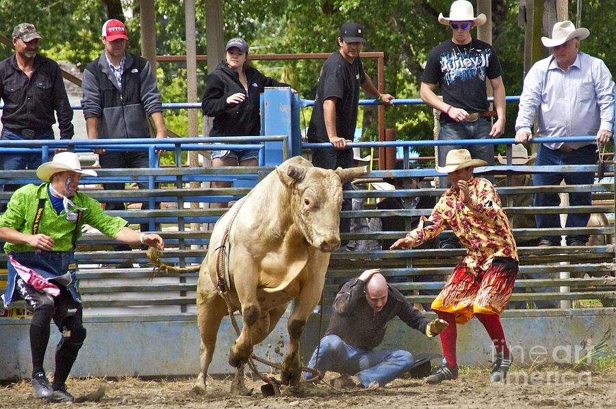 Rodeo Clowns To The Rescue Photograph