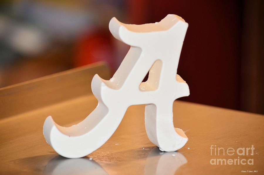 Roll Tide Photograph - Roll Tide by Maria Urso