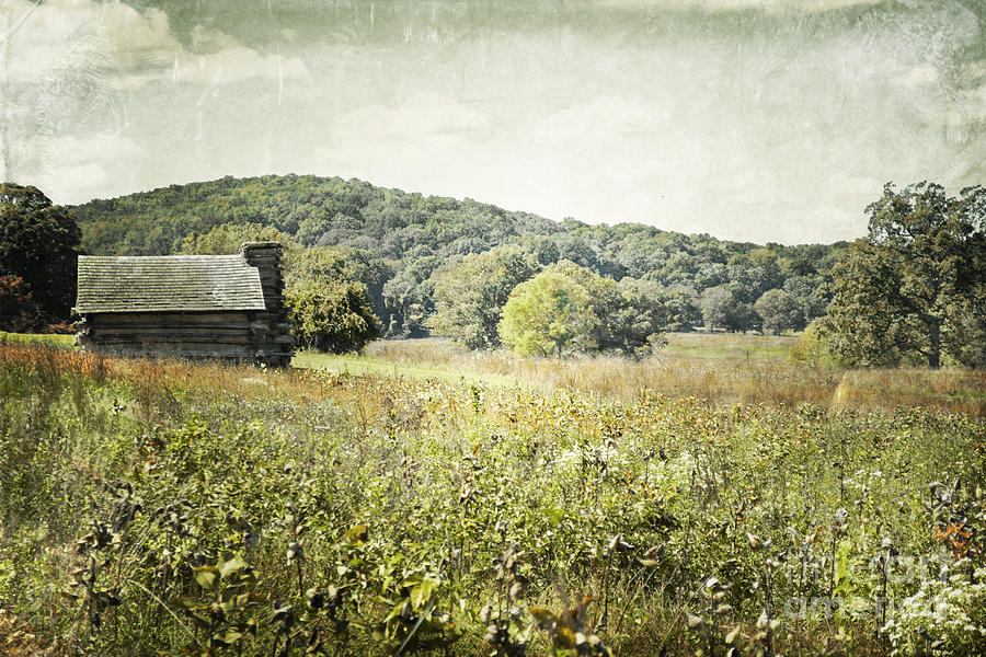 Rolling Hills Cabin Photograph