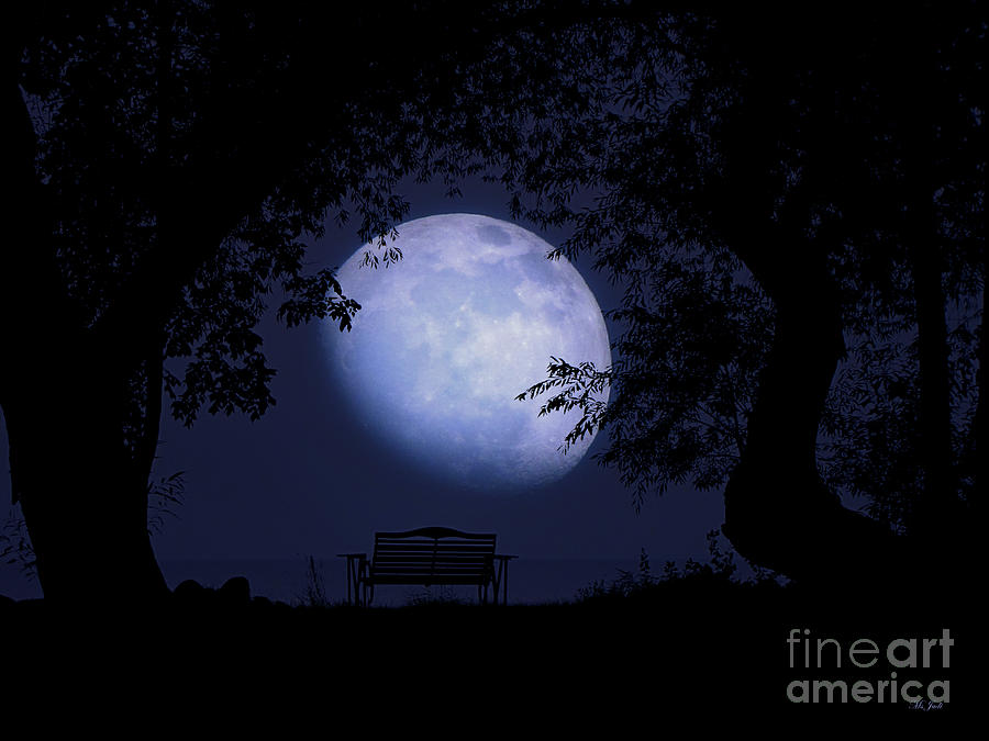 Romance Moon Photograph  - Romance Moon Fine Art Print