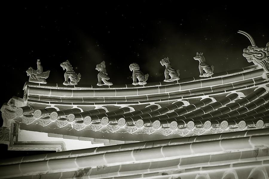 Roof National Palace Museum Taiwan City - Taipei  Photograph