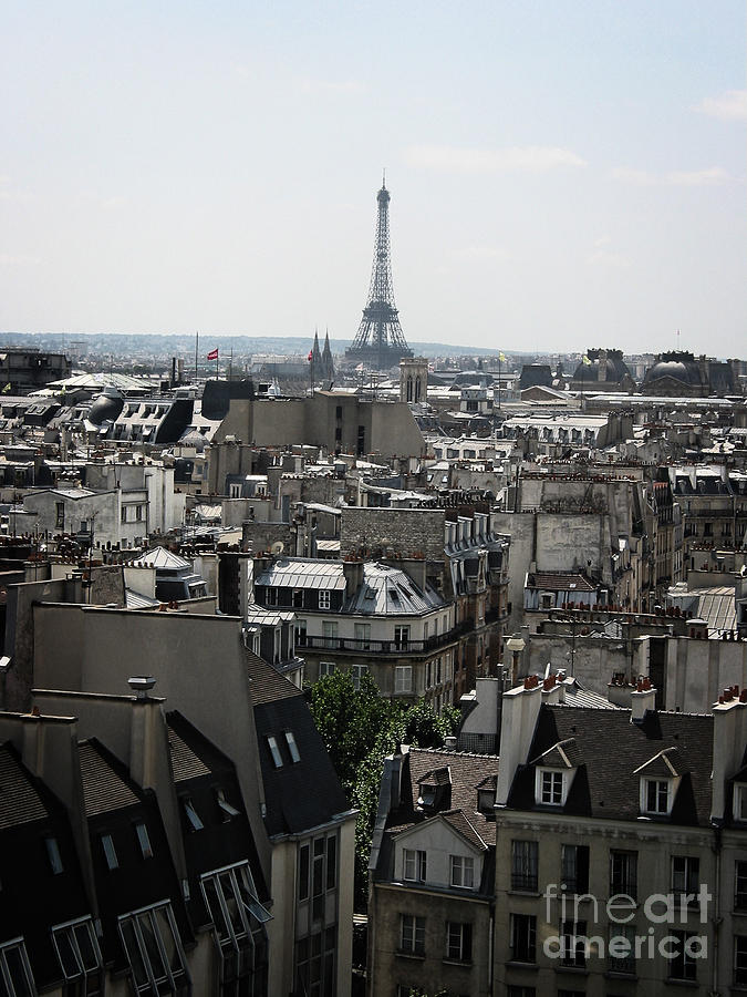 Roofs Of Paris. France Photograph