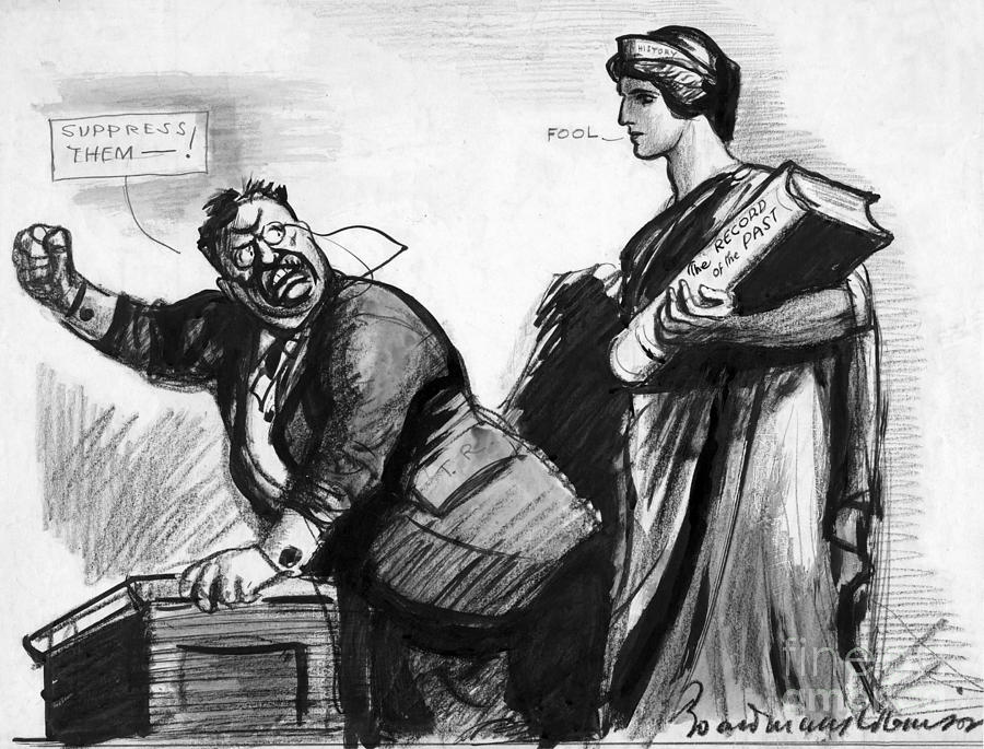 Roosevelt Cartoon, C1916 Photograph