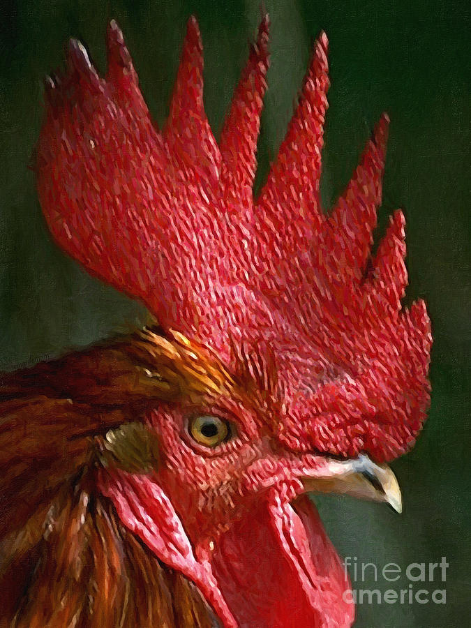Rooster - Painterly Photograph
