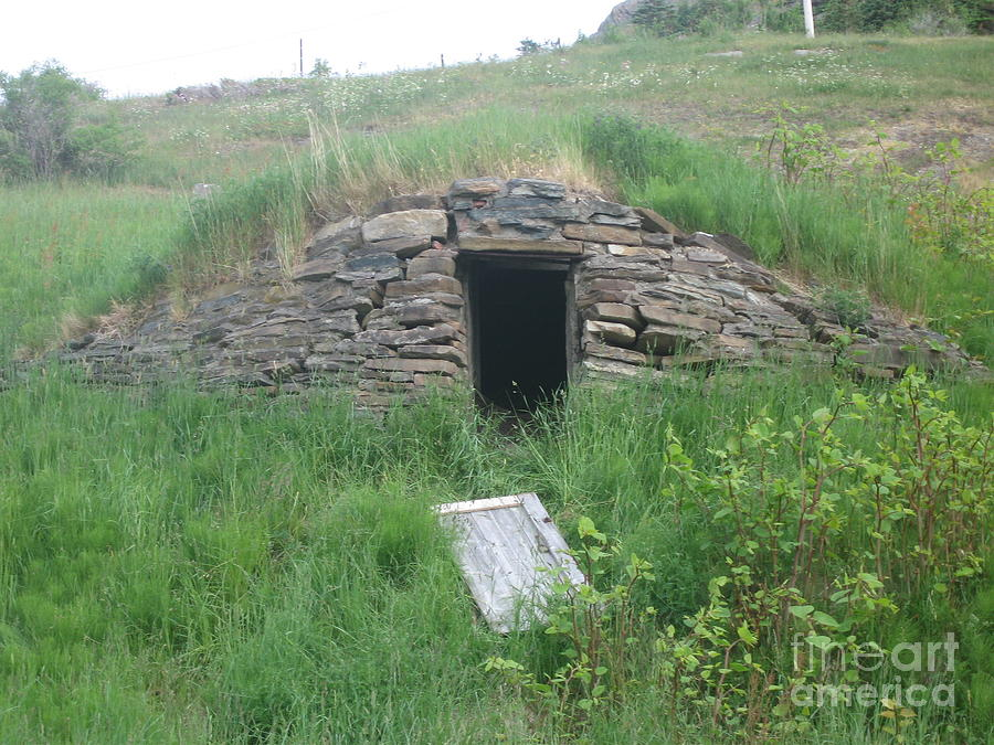 descriptive essay the old root cellar Descriptive essay - the old root cellar - the old root cellar our summer trips to a shrill whistle sounds and the voice of coach chuck booms through out the.