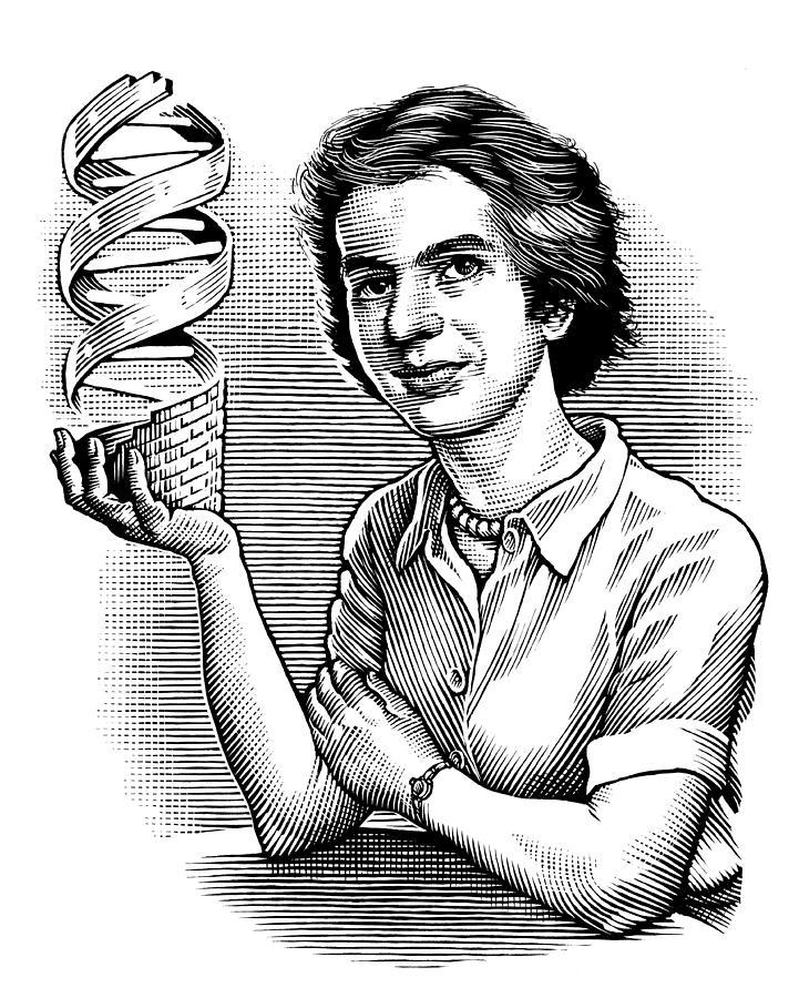 Rosalind Franklin Photograph - Rosalind Franklin, British Chemist by ...