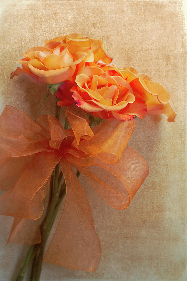 Rose Bouquet Photograph  - Rose Bouquet Fine Art Print