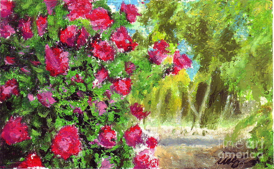 Rose Garden Drawing  - Rose Garden Fine Art Print