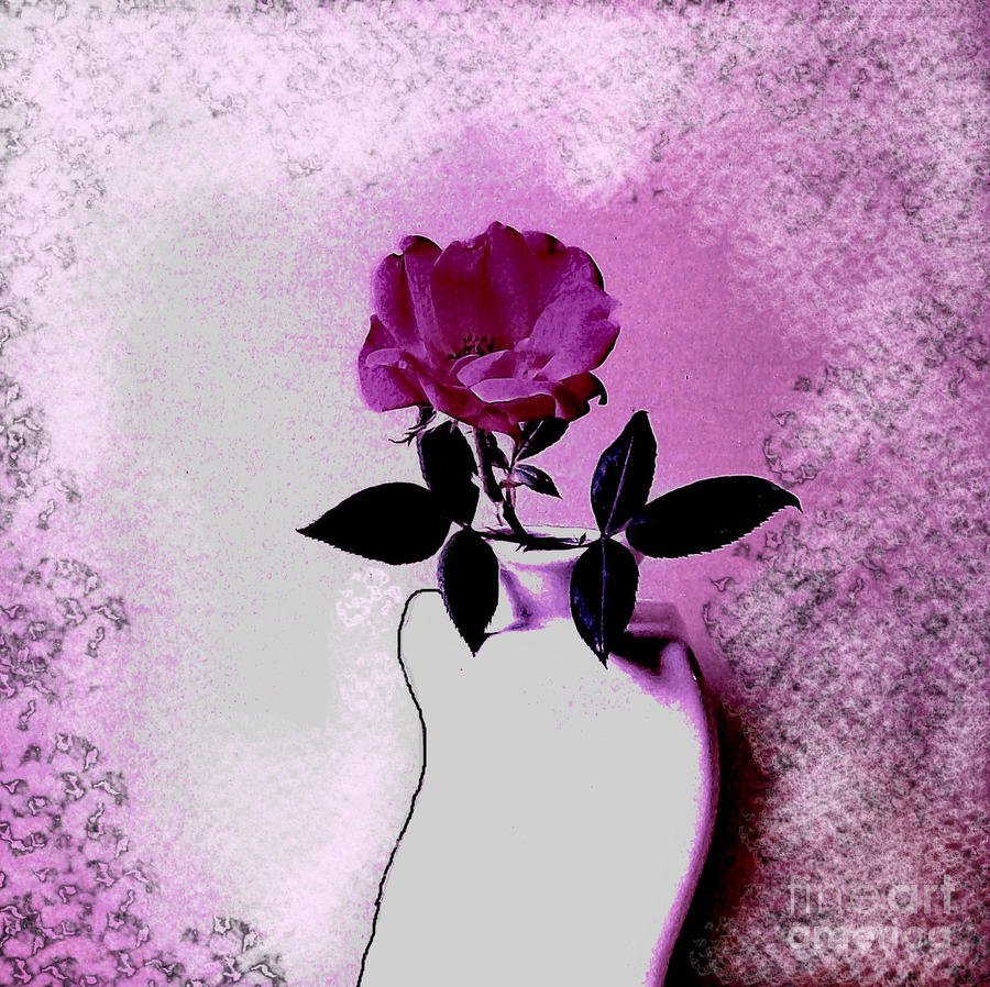 Rose In A Crooked Vase Ll Photograph