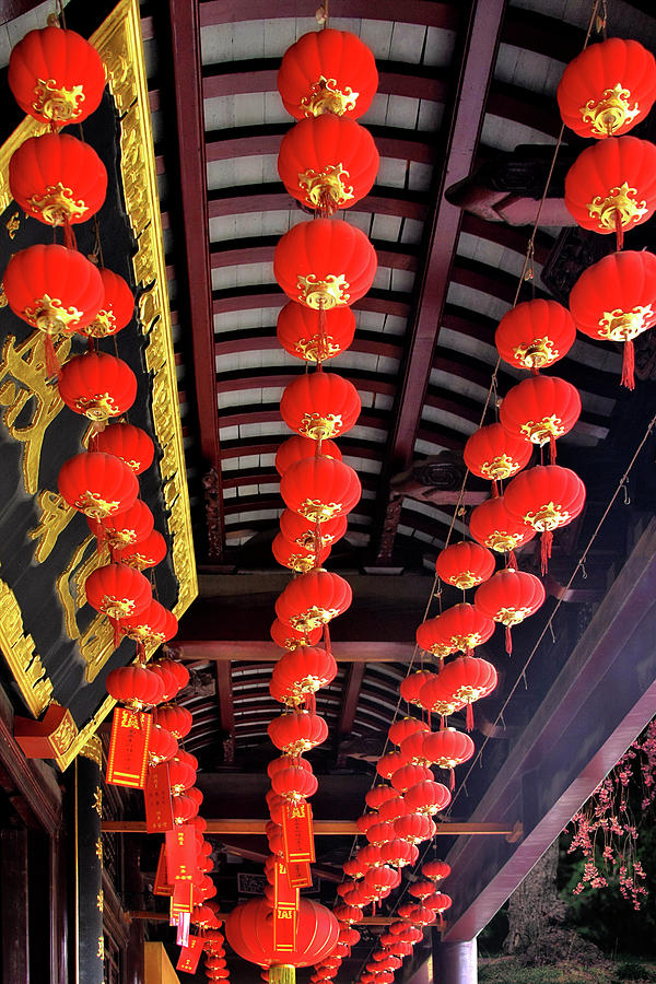 Rows Of Red Chinese Paper Lanterns - Shanghai China Photograph  - Rows Of Red Chinese Paper Lanterns - Shanghai China Fine Art Print