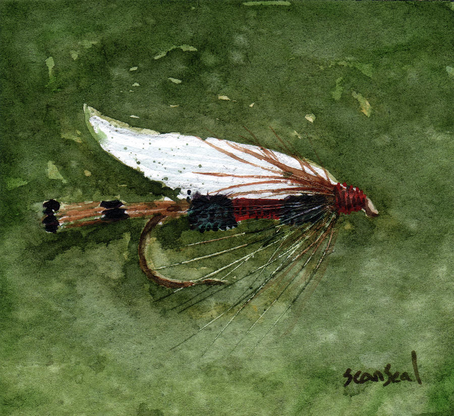 Royal Coachman Wet Fly Painting  - Royal Coachman Wet Fly Fine Art Print