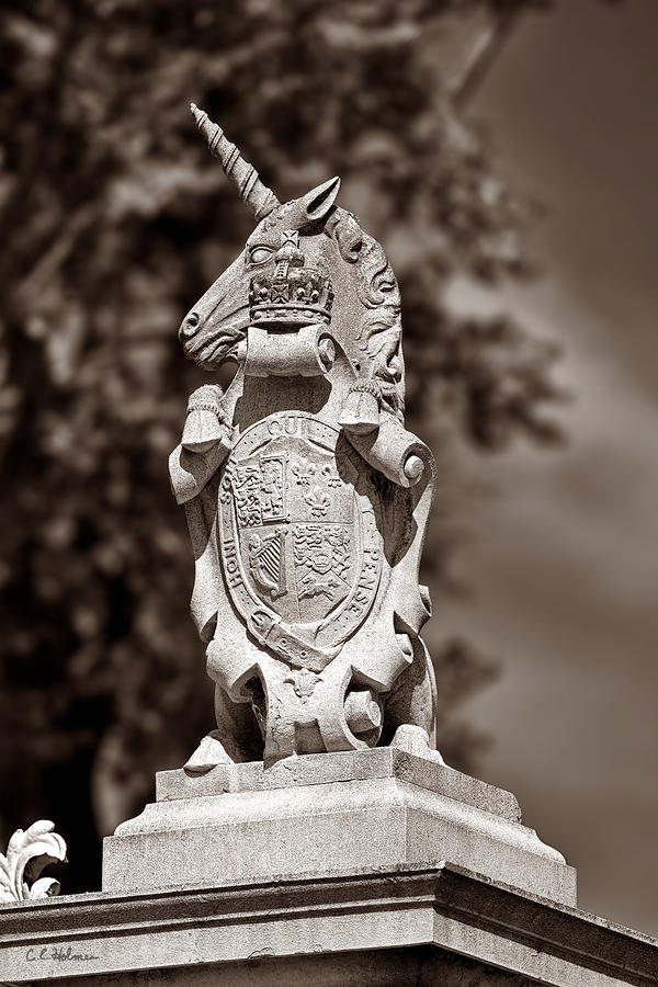 Royal Unicorn - Sepia Photograph  - Royal Unicorn - Sepia Fine Art Print