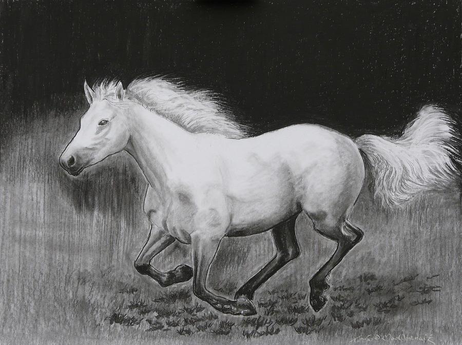 Runaway Mollie Drawing