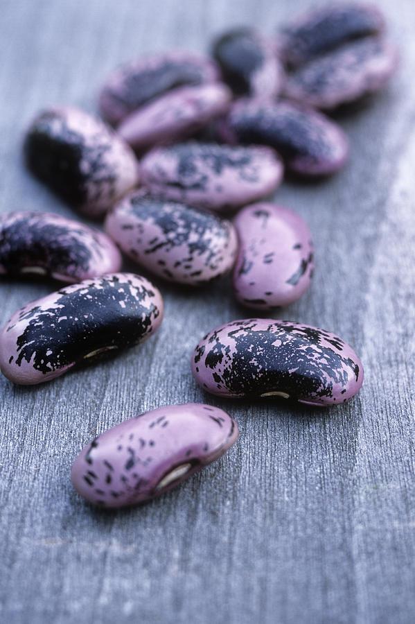 Runner Bean Photograph - Runner Beans (phaseolus scarlet Runner) by Maxine Adcock