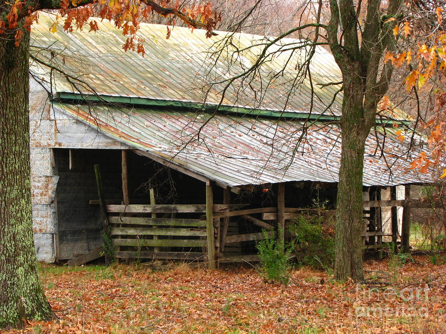 Rural Photograph  - Rural Fine Art Print
