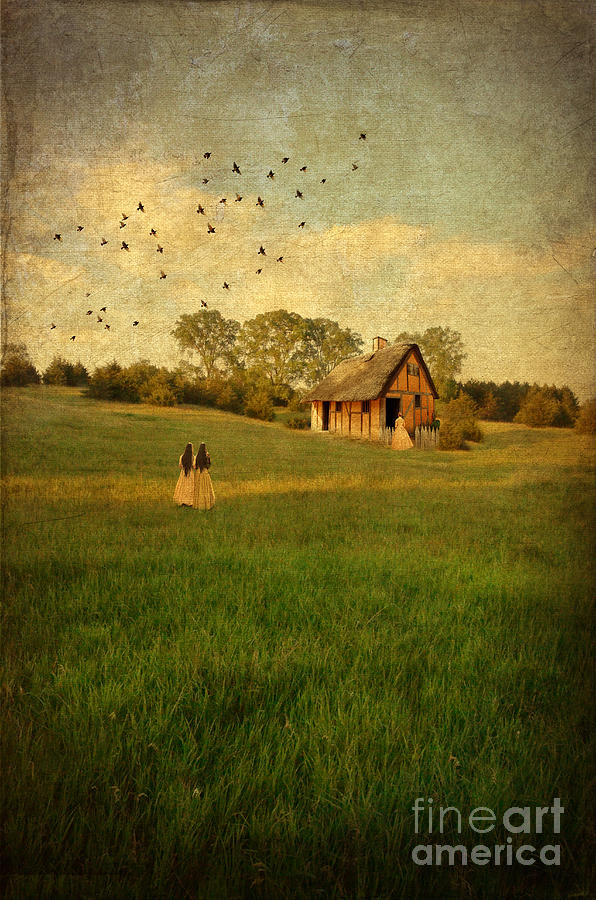Rural Cottage Photograph  - Rural Cottage Fine Art Print