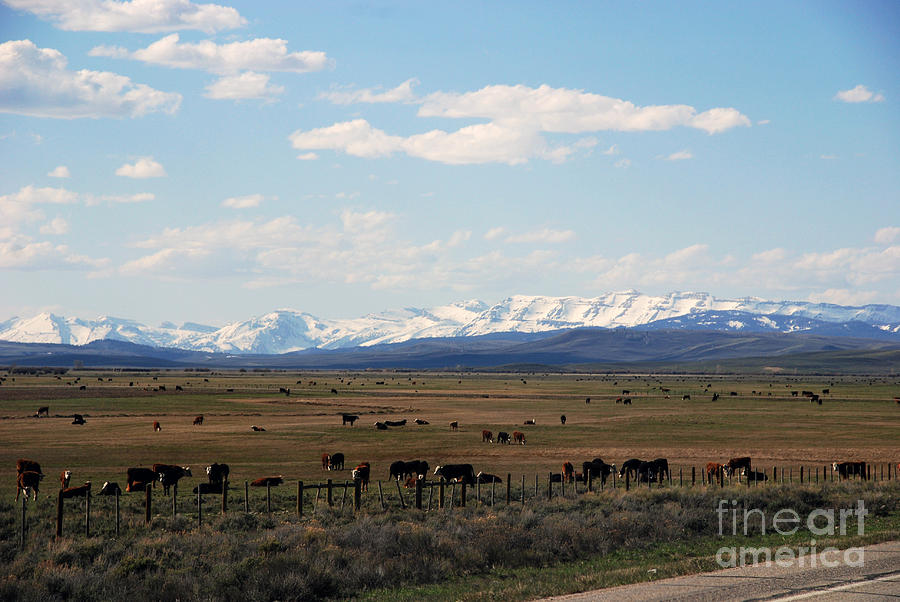 Rural Wyoming - On The Way To Jackson Hole Photograph